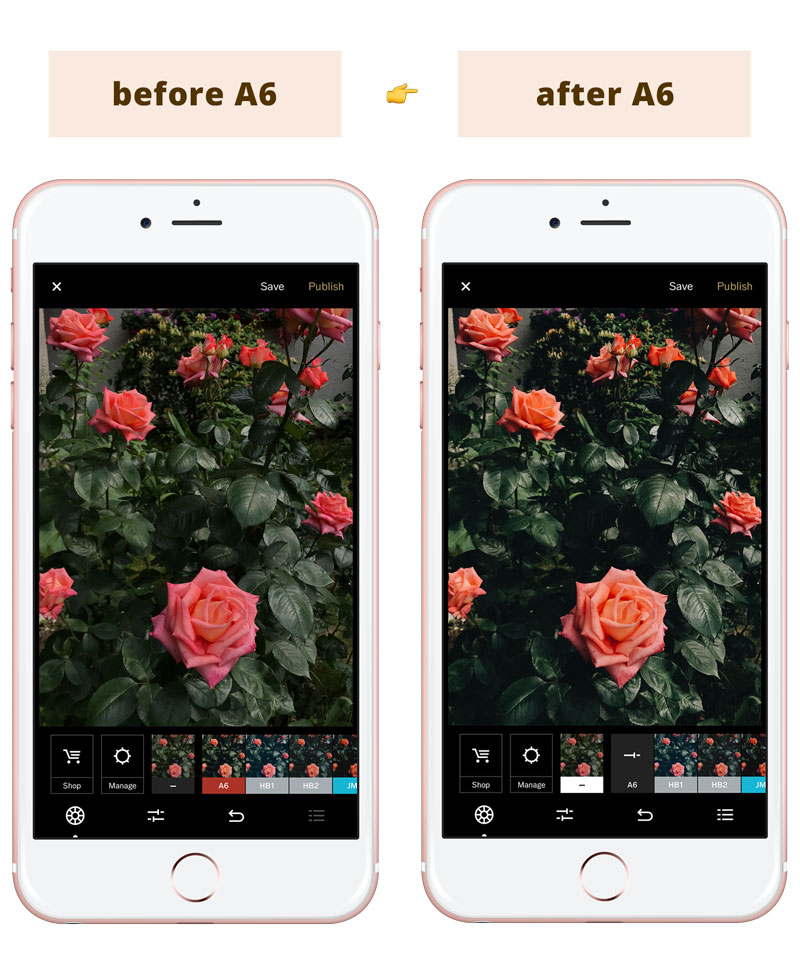Instagram Feed Tips For Success - Best VSCO filters for Instagram feed: A6