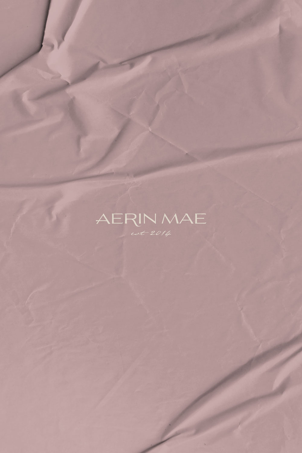 Aerin Mae Brand Mockup by Everything Here Now