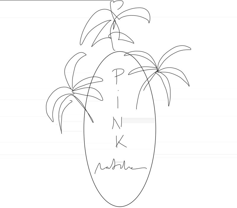 pm-idea